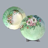 Thomas/Hutschenreuther Hand Painted Dessert Plates, Set of 2