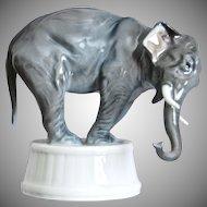 Rosenthal Porcelain Elephant Figurine, 1929