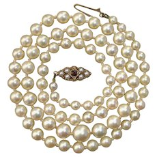 "Antique Golden Cream Pearls w/ 9Kt Gold Garnet & Grey Seed Pearl Clasp 21"" Necklace"