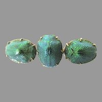 Victorian Gold Filled Triple Scarab Brooch
