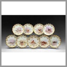 9 Royal Doulton Named Bird Plates for Tiffany & Company