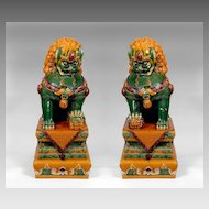 Qing Dynasty Temple Guardian Lion Foo Dogs with Sancai Glaze