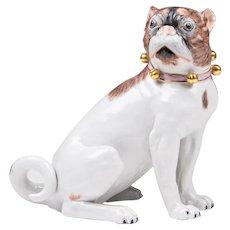 Dresden Porcelain Pug By Carl Thieme