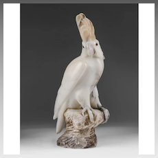 Alabaster Cockatoo