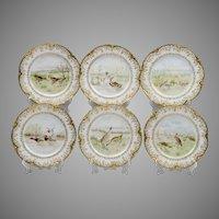 Set of 6 Haviland & Co. Limoges Game Birds Plates