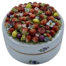 Early 1900s Von Schierholz Germany Porcelain Dresser Box Molded Fruit Lid