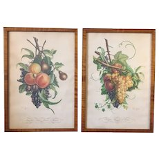 Pair Vintage Jean Louis Prevost Fruit Prints in Solid Tiger Maple Frames