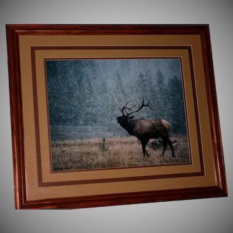 Denver Bryan 1984 LE Elk print