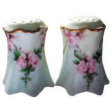 Versailles Bavaria Hand Painted Hallmarked Porcelain Salt and Pepper Shakers