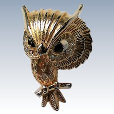 Owl Pin with Exaggerated Head and Eye