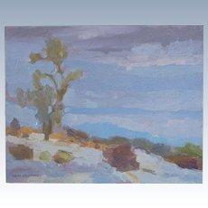 Anza Borrego Desert Landscape By Plein Air Artist Saim Caglayan