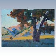 California Landscape by Plein Air Artist Saim Caglayan
