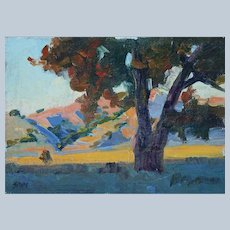 California Landscape by Plein Air Artist Saim Caglayan