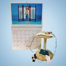 Madame Alexander Cissy Size Accessories and Calendar