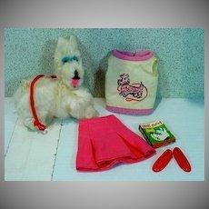 Rare Vintage Mattel Skipper Outfit, Dog Show, 1966