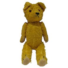 Charming Antique Mohair, Jointed, Straw Stuffed Teddy Bear