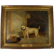 John Pitman (fl. 1820-1846) English Bulldog Oil on Canvas Portrait