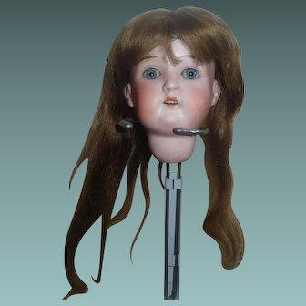 Small  Brown Human Hair Doll Wig