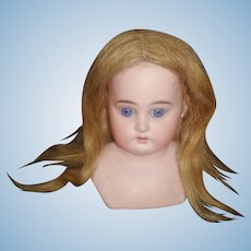 Nice Antique Human Hair Blond Doll Wig