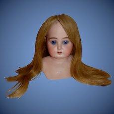 Nice Dark Blonde Human Hair Doll Wig