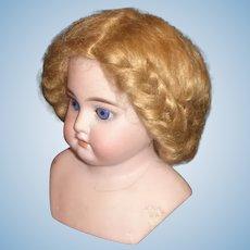 Dark Blonde Mohair Doll Wig, 12