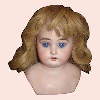 Nice Antique Dark Blonde Human Hair Doll Wig, Original Set