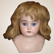 Nice Antique Dark Blonde Human Hair Doll Wig, Original Set