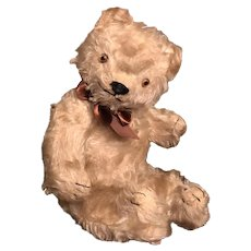 "15"" Antique Mohair Teddy Bear with Glass Eyes"