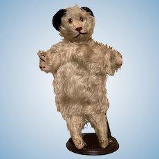 Antique Steiff Dog Hand Puppet