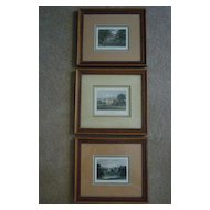 Set of 3 Hand Colored English Engravings, Neale & Radclyffe
