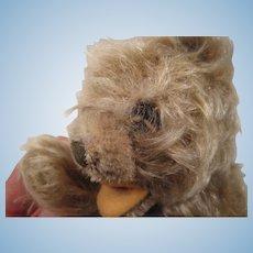 Steiff's Smallest And Adorable Floppy Zotty Teddy Bear