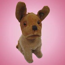 Steiff's Tiniest Pre-War Bully Bulldog With ID