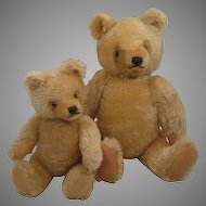 "A Pair Of Blonde Steiff ""Mask"" Style Original Teddy Bears"