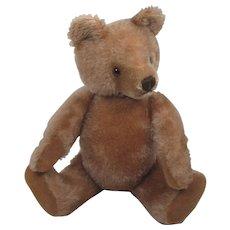 Steiff's Medium Sized Carmel Mask Teddy Bear With ID