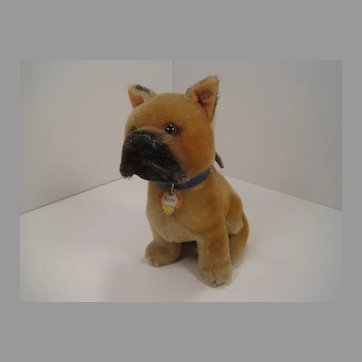 Steiff's Largest Sitting Boxer Dog With IDs