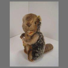 Steiff's Medium Nagy Beaver With All IDs
