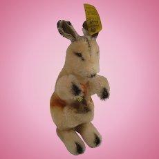 Steiff's Smallest Kangoo Kangaroo With All IDs