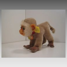Steiff's Smallest and Earliest Coco the Baboon With All IDs