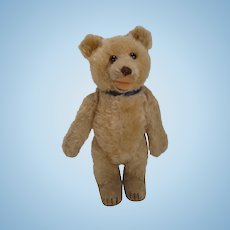 Steiff's Totally Adorable Post War Blonde Mohair Teddy Baby With ID