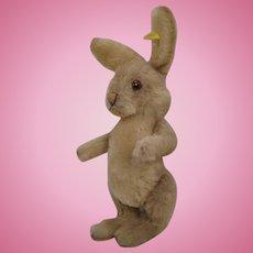 Steiff's Delightful, Medium Sized Fully Jointed Niki Rabbit With IDs