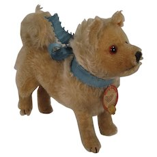Steiff's Very Rare Standing Chow Chow Brownie Zeppelin Mascot Dog With IDs