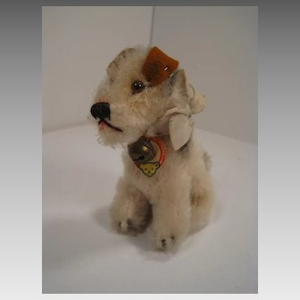 Steiff's Rare And Delightful Sitting Foxy Fox Terrier With Two IDs