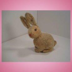 Steiff's Sitting Prewar Rabbit With ID