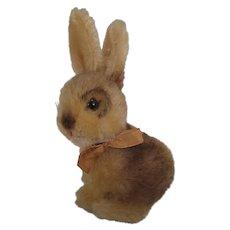 Steiff's Smallest Sonny Rabbit With IDs