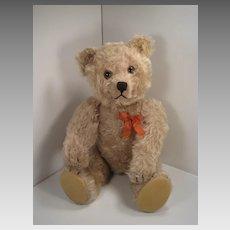 1950's-Era Very Large Mohair Yes No Schuco Teddy Bear