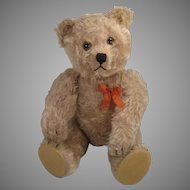 1950's-Era Very Large Mohair Yes No Schuco Teddy Bear