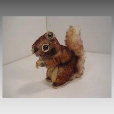 Steiff's Smallest Perri Squirrel With IDs