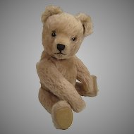 Adorable, Medium Sized Schuco Yes No Teddy Bear