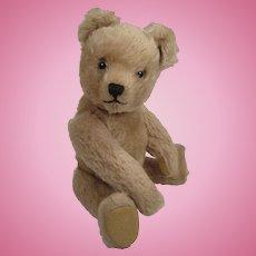 Adorable, Medium Sized Schuco Yes No Teddy Bear