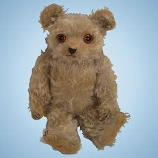 Adorable 1920's-era Blue Mohair Helvetica Teddy Bear With WORKING Music Box